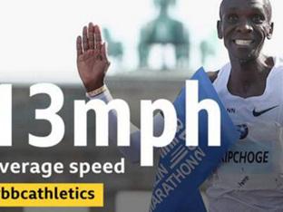 100m를 17.2초에 420번, 볼수록 놀라운 킵초게 세계기록