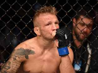 챔피언 벨트 반납한 UFC 딜라쇼, 금지약물 복용 적발