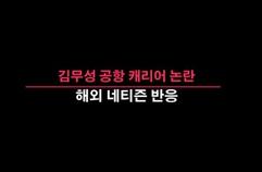 김무성 해외반응 공항 캐리어 논란